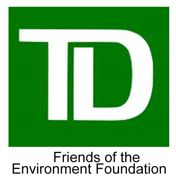 This image has an empty alt attribute; its file name is TD-Bank.png